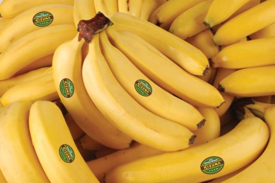 BANANA VARIETIES: CAVENDISH